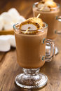 Hot Chocolate With Toasted Marshmallow Stock Photography - 33710552