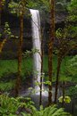Silver Falls - Oregon Waterfall Stock Photos - 33727643