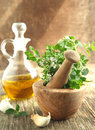 Oregano Herb In Wooden Mortar And Pestle. Stock Images - 33728614