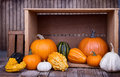 Assorted Pumpkins And Gourds Stock Photo - 33731820