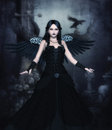 Dark Angel Computer Graphics Stock Images - 33736574