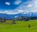 German Idyllic Pastoral Countryside In Spring With Alps In Backg Royalty Free Stock Photography - 33738067