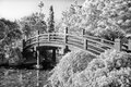Japanese Footbridge Over Pond In Black And White Stock Image - 33797251