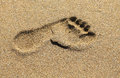 Footprints In The Sand Stock Photography - 33813012