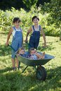 Children Play In Garden Royalty Free Stock Photography - 33868537