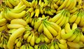 Pile Of Yellow And Green Bananas In A Grocery Store Setting Stock Photo - 34051720