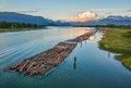 Logs Floating On River With Mountains Stock Photos - 34052753