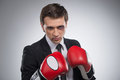 Ready To Fight Stock Photography - 34098842