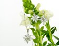 Jewellery On Flowers Royalty Free Stock Image - 34099916