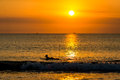 Surfing At Sunset Royalty Free Stock Photo - 34144575