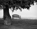 Lonely Park Bench In Black And White Royalty Free Stock Photo - 34155455