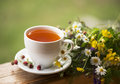 Cup Of Aromatic Tea Royalty Free Stock Image - 34169846