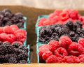 Wooden Box With Baskets Of Berries Royalty Free Stock Image - 34178026