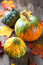 Autumn Pumpkins Royalty Free Stock Photo - 34256935