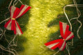 Bow Bows Christmas Card Spruce Twig Red Background Royalty Free Stock Image - 34280736