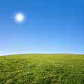 Grass Field And Blue Sky Stock Image - 34325611