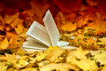 Book And Autumn Leaves Stock Images - 34376554