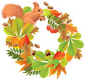 Autumn Wreath With Squirrel Stock Photography - 34404392