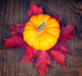 Top View Of A Pumpkin Royalty Free Stock Photo - 34415155