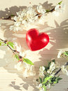 Spring Flowers And Red Heart Candle Stock Photo - 34417780