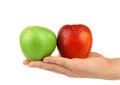 Hand Holding Green And Red Apples Stock Images - 34420564