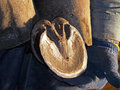 Horse Hoof In Farrier Hands Royalty Free Stock Image - 34429996