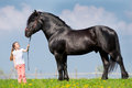 Child And Big Horse In Field Royalty Free Stock Photos - 34450468