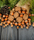 Nuts And Green Twigs Stock Photos - 34462573