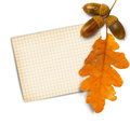Old Grunge Paper With Autumn Oak Leaves And Acorns Stock Images - 34467134