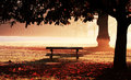 Park Bench Royalty Free Stock Image - 3458166