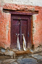 Old Door At Buddhist Monastery Temple Stock Photo - 34569370