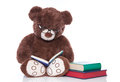 Teddy Bear With Glasses Reading Stories For Christmas - Isolated Royalty Free Stock Image - 34585076
