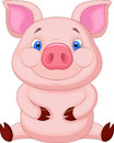 Cute Baby Pig Cartoon Sitting Royalty Free Stock Images - 34612779