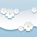 Floral Background, Greeting Card With 3d Flowers S Royalty Free Stock Photo - 34653575