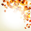 Maple Autumn Leaves Background. EPS 10 Royalty Free Stock Photography - 34666147