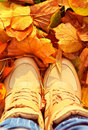 Autumn Background With Fall Leaves And Woman Shoes Royalty Free Stock Photo - 34670645