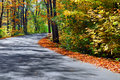 Fall Forest Road Stock Image - 3478001