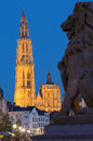Antwerp - Cathedral Of Our Lady With The Lion Statue And Suikerrui Street In Evening Stock Photography - 34714422