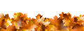 Pattern Of Autumn Leaves. EPS 10 Royalty Free Stock Image - 34738236