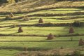 Old Traditional Hay Stacks Stock Images - 34748384