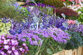 Flowers For Sale At A Dutch Flower Market, Stock Photo - 34765640