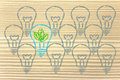Unique Lightbulb With Leaves Inside, Metaphor Of Green Economy Royalty Free Stock Photography - 34785127