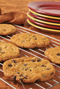 Fresh Baked Chocolate Chip Cookies Stock Image - 34790981