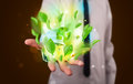 Young Businessman Presenting Eco Green Leaf Recycle Energy Conce Stock Image - 34795901
