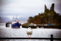 Seagull At Moil Castle Stock Photography - 34809432