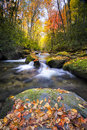 Silky Autumn Stream In The Smokies Royalty Free Stock Images - 34815389