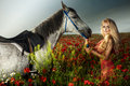 Gorgeous Blonde Woman Posing With Horse. Stock Image - 34837841