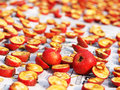 Hawthorn And Dried Fruit Stock Images - 34849124