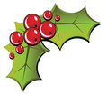 Christmas Holly Royalty Free Stock Images - 3499659