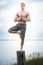Young Adult Doing Yoga On A Stump In Nature Royalty Free Stock Photos - 34974138